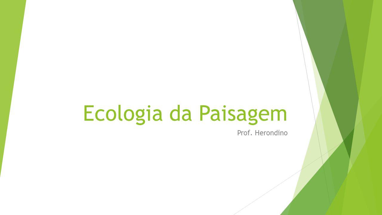 Introdução  Ecologia da paisagem é a ciência que estuda e procura melhorar o relacionamento entre os processos ecológicos no ambiente e ecossistemas particulares.