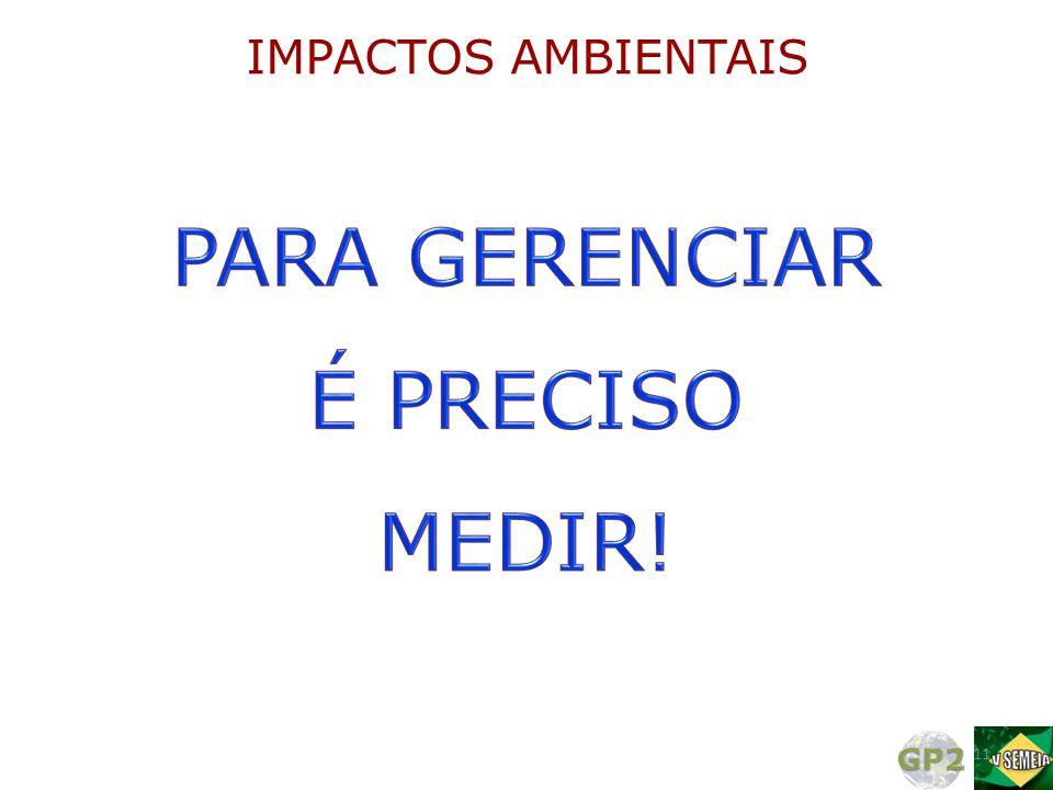 11 IMPACTOS AMBIENTAIS