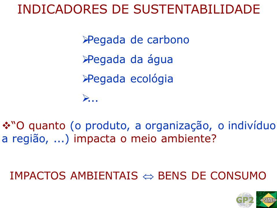 """INDICADORES DE SUSTENTABILIDADE  Pegada de carbono  Pegada da água  Pegada ecológia ...  """"O quanto (o produto, a organização, o indivíduo a regiã"""