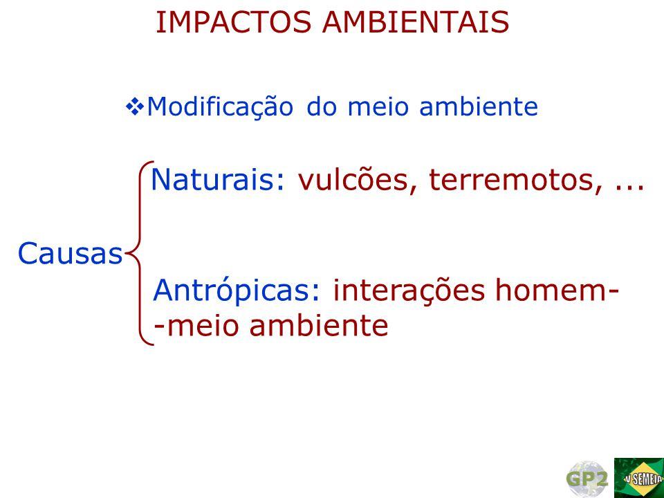  Modificação do meio ambiente Causas Naturais: vulcões, terremotos,... Antrópicas: interações homem- -meio ambiente