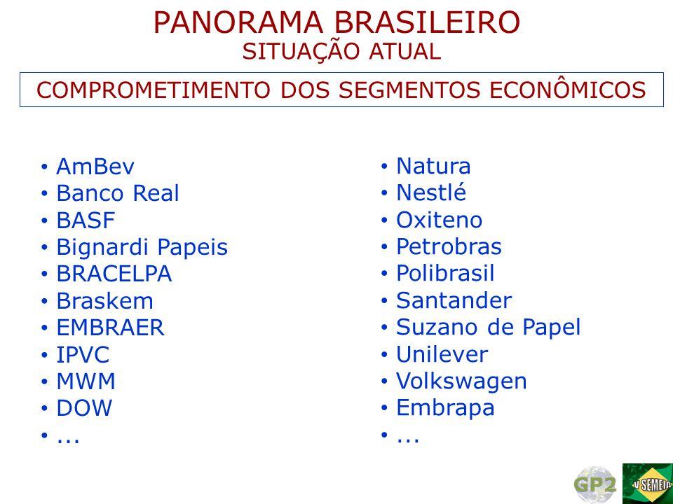 • AmBev • Banco Real • BASF • Bignardi Papeis • BRACELPA • Braskem • EMBRAER • IPVC • MWM • DOW •... • Natura • Nestlé • Oxiteno • Petrobras • Polibra
