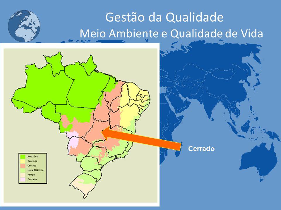 Carlos Freire - 2013 Gestão da Qualidade Meio Ambiente e Qualidade de Vida Cerrado