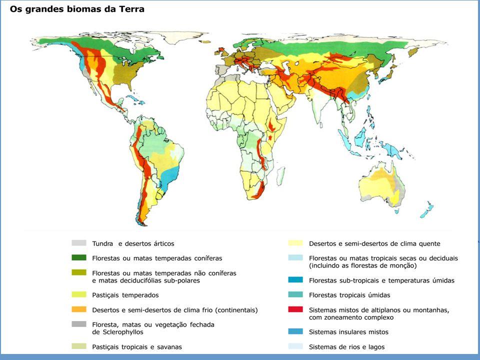 Carlos Freire - 2013 Gestão da Qualidade Meio Ambiente e Qualidade de Vida Os Grandes Biomas da Terra Os desertos, p.ex., eles estão tanto em regiões quentes, quanto em regiões frias, mas sempre em regiões em que falta umidade.