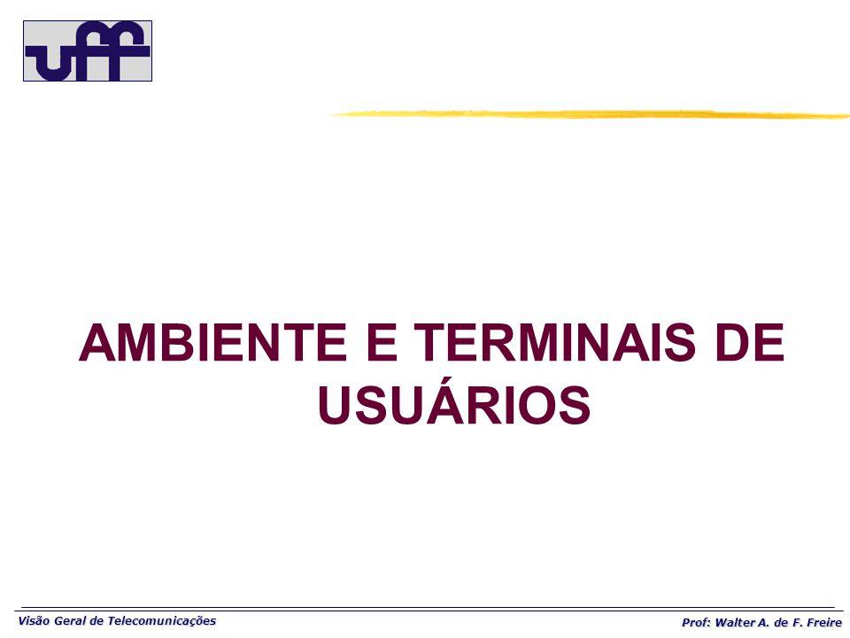 Visão Geral de Telecomunicações Prof: Walter A. de F. Freire AMBIENTE E TERMINAIS DE USUÁRIOS