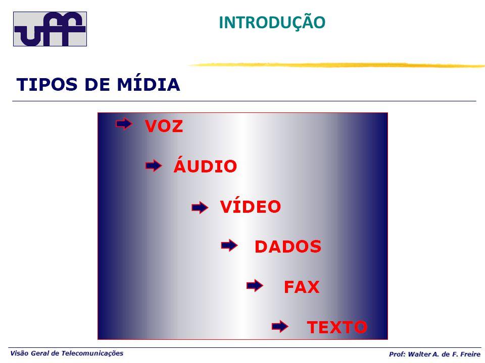 Visão Geral de Telecomunicações Prof: Walter A. de F. Freire INTRODUÇÃO CENÁRIO ATUAL