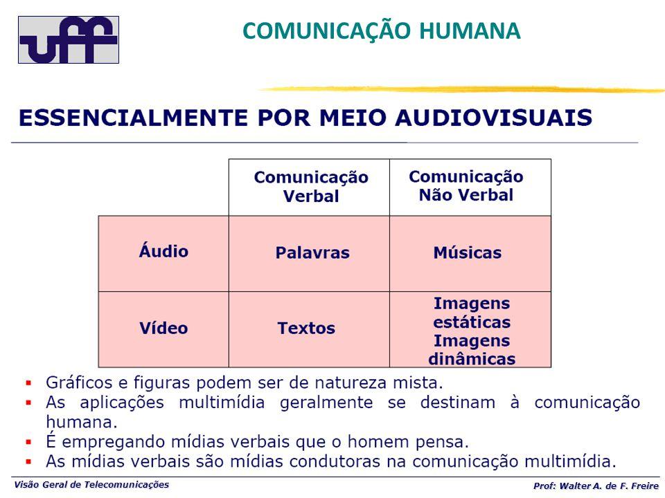 Visão Geral de Telecomunicações Prof: Walter A. de F. Freire COMUNICAÇÃO HUMANA
