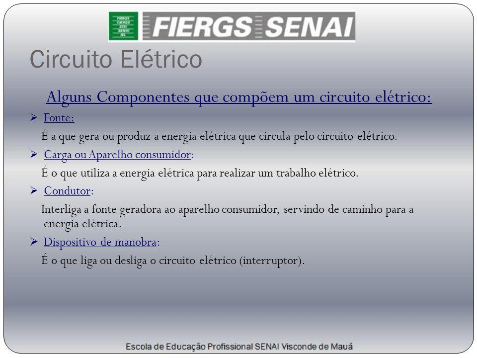 Circuito Elétrico Alguns Componentes que compõem um circuito elétrico:  Fonte: É a que gera ou produz a energia elétrica que circula pelo circuito el