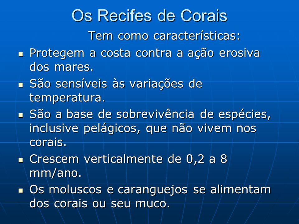 Os Recifes de Corais Tem como características: Tem como características:  Protegem a costa contra a ação erosiva dos mares.  São sensíveis às variaç
