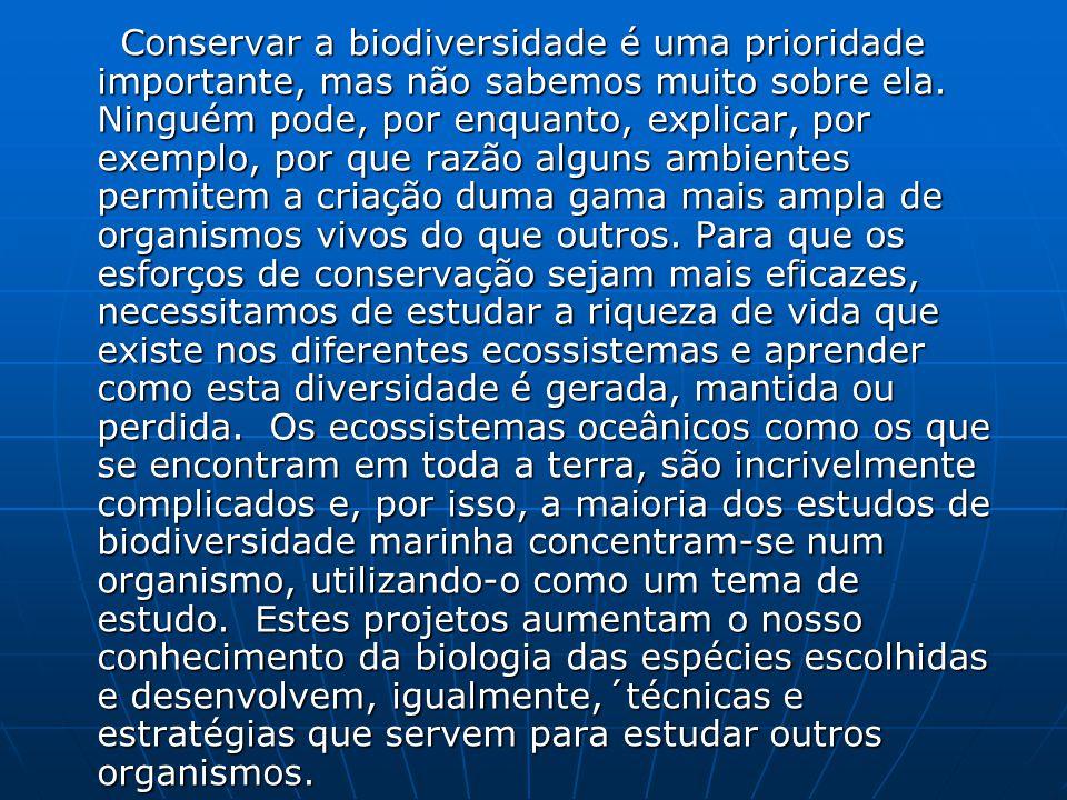 Conservar a biodiversidade é uma prioridade importante, mas não sabemos muito sobre ela. Ninguém pode, por enquanto, explicar, por exemplo, por que ra