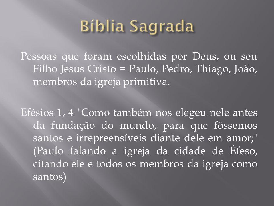 Pessoas que foram escolhidas por Deus, ou seu Filho Jesus Cristo = Paulo, Pedro, Thiago, João, membros da igreja primitiva.