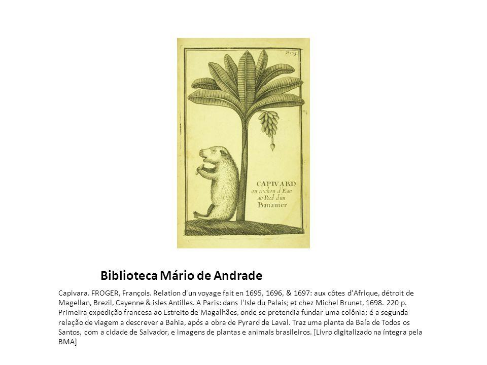 Biblioteca Mário de Andrade Capivara.FROGER, François.