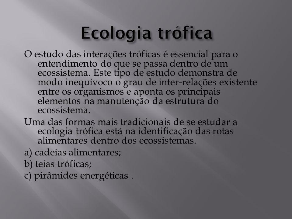 O estudo das interações tróficas é essencial para o entendimento do que se passa dentro de um ecossistema.