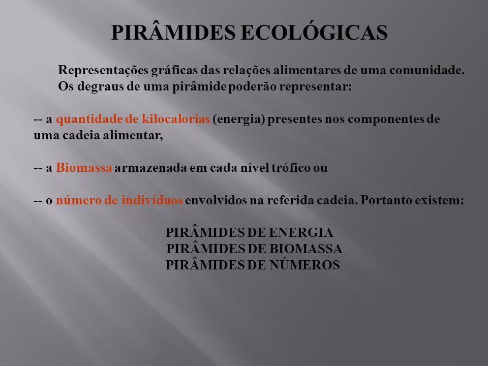 PIRÂMIDES ECOLÓGICAS Representações gráficas das relações alimentares de uma comunidade.