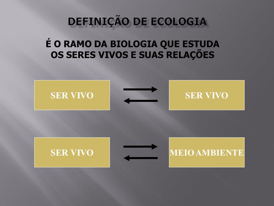 É O RAMO DA BIOLOGIA QUE ESTUDA OS SERES VIVOS E SUAS RELAÇÕES SER VIVO MEIO AMBIENTE