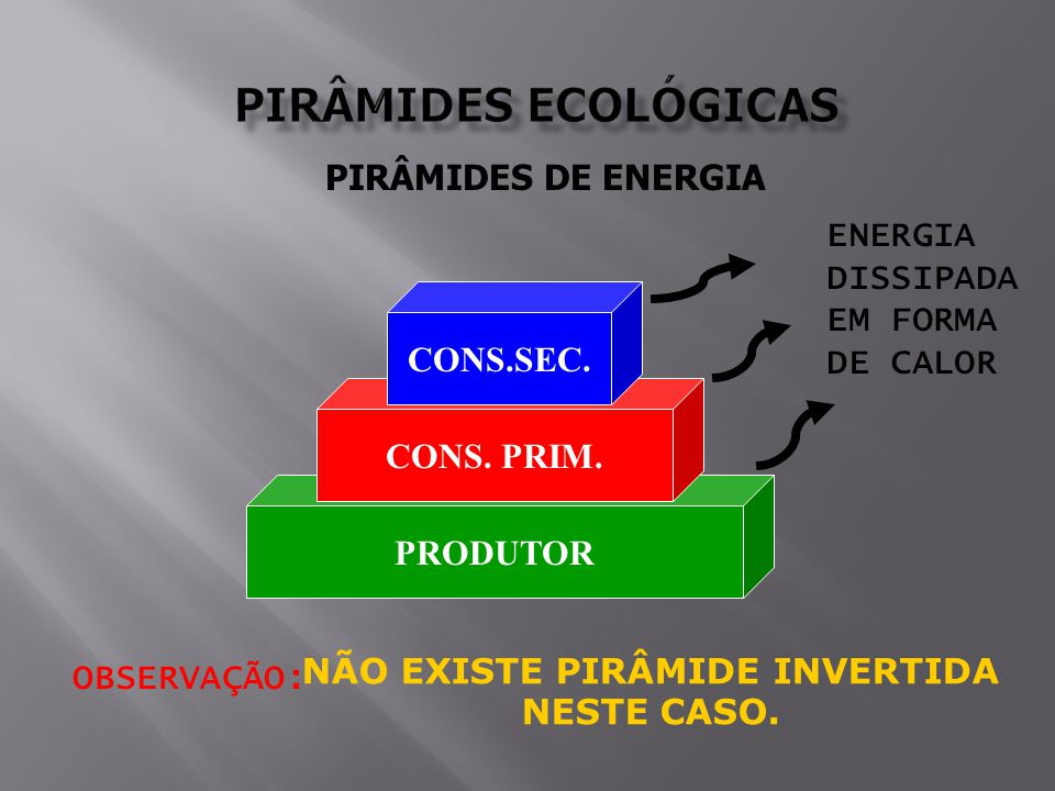 PIRÂMIDES DE ENERGIA PRODUTOR CONS.PRIM. CONS.SEC.