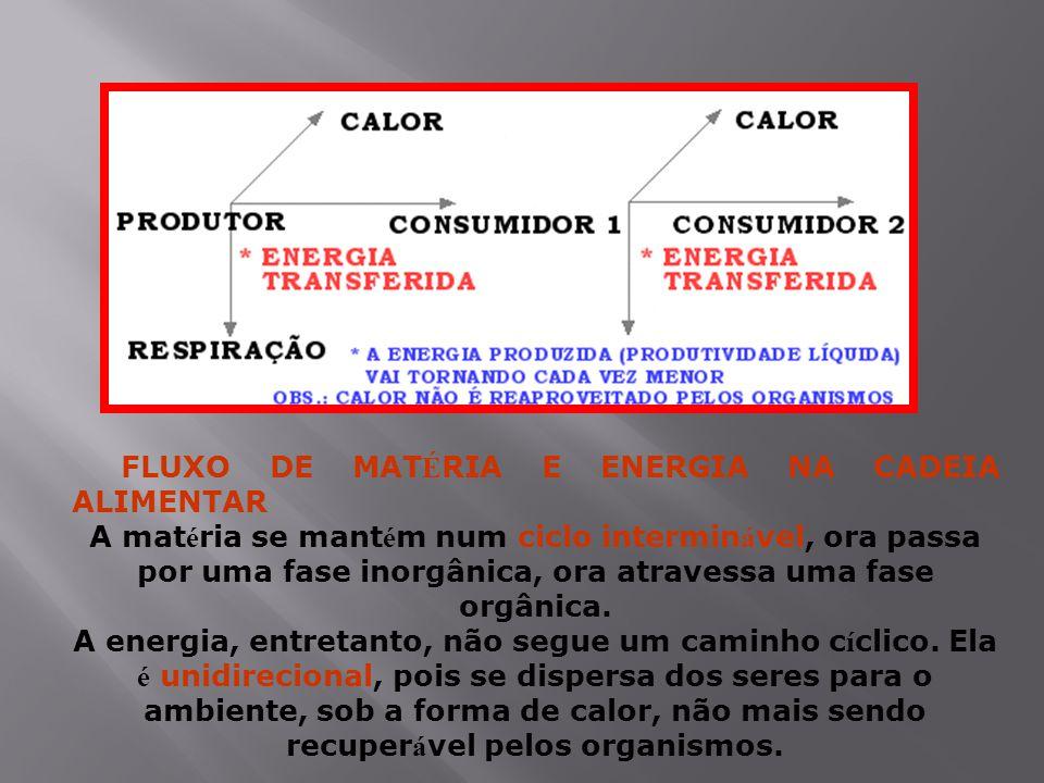 FLUXO DE MAT É RIA E ENERGIA NA CADEIA ALIMENTAR A mat é ria se mant é m num ciclo intermin á vel, ora passa por uma fase inorgânica, ora atravessa uma fase orgânica.