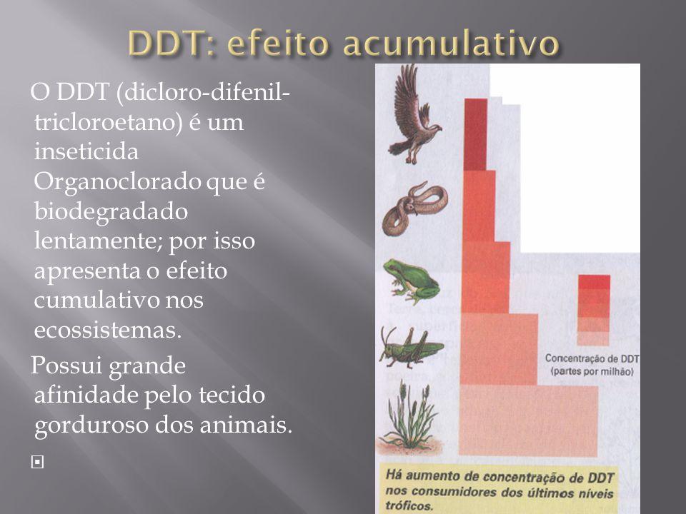 O DDT (dicloro-difenil- tricloroetano) é um inseticida Organoclorado que é biodegradado lentamente; por isso apresenta o efeito cumulativo nos ecossistemas.