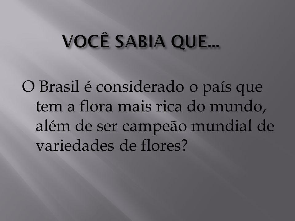 O Brasil é considerado o país que tem a flora mais rica do mundo, além de ser campeão mundial de variedades de flores?