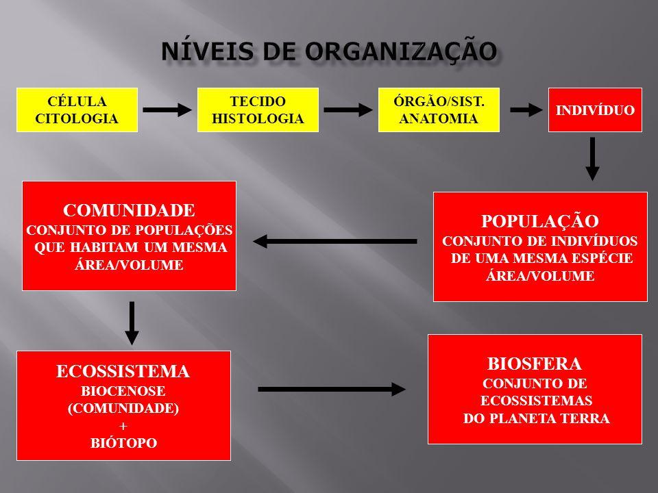 CÉLULA CITOLOGIA TECIDO HISTOLOGIA INDIVÍDUO ÓRGÃO/SIST.