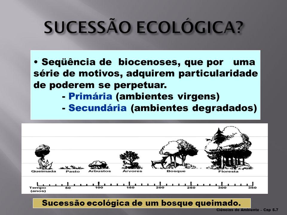HABITAT NICHO ECOLÓGICO LOCAL COMUM = SAVANA PROFISSÃO = SEU PAPEL ZEBRA, ELEFANTE, HIENA...