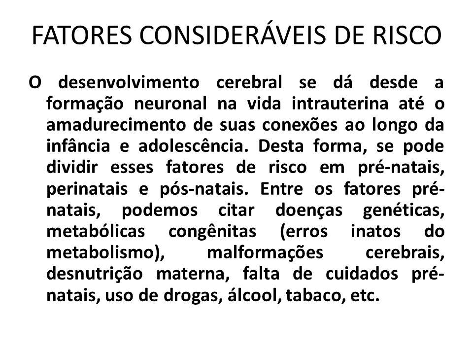 FATORES CONSIDERÁVEIS DE RISCO O desenvolvimento cerebral se dá desde a formação neuronal na vida intrauterina até o amadurecimento de suas conexões a