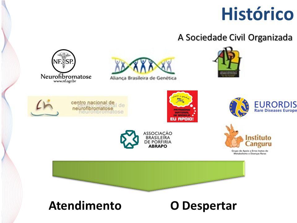 Histórico A Sociedade Civil Organizada AtendimentoO Despertar