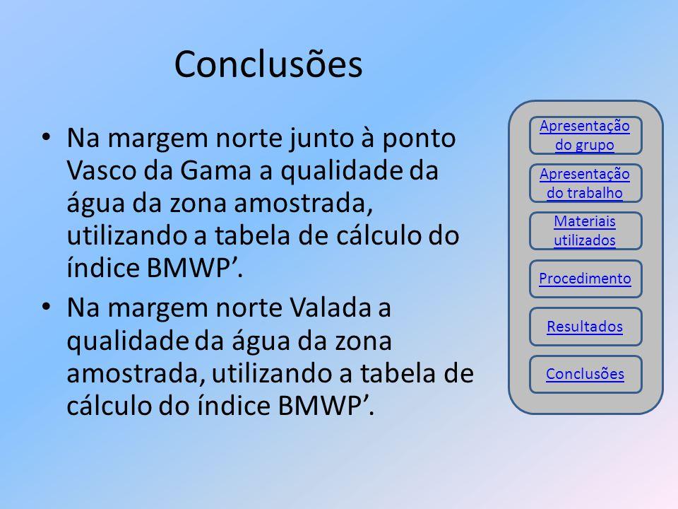 Conclusões Na margem norte junto à ponto Vasco da Gama a qualidade da água da zona amostrada, utilizando a tabela de cálculo do índice BMWP'. Na marge