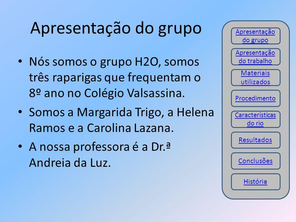 Apresentação do grupo Nós somos o grupo H2O, somos três raparigas que frequentam o 8º ano no Colégio Valsassina. Somos a Margarida Trigo, a Helena Ram