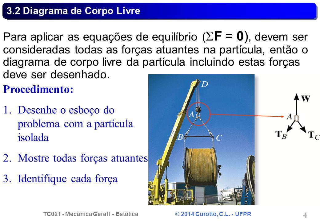 TC021 - Mecânica Geral I - Estática © 2014 Curotto, C.L. - UFPR 4 3.2 Diagrama de Corpo Livre Para aplicar as equações de equilíbrio (  F = 0), devem