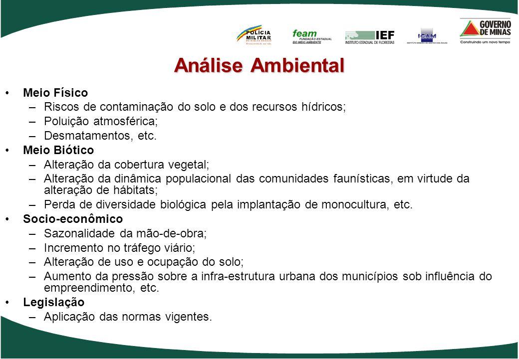 Análise Ambiental Meio Físico –Riscos de contaminação do solo e dos recursos hídricos; –Poluição atmosférica; –Desmatamentos, etc. Meio Biótico –Alter