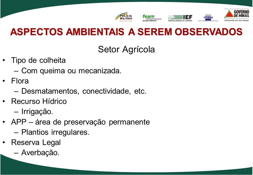 ASPECTOS AMBIENTAIS A SEREM OBSERVADOS Setor Agrícola Tipo de colheita –Com queima ou mecanizada. Flora –Desmatamentos, conectividade, etc. Recurso Hí