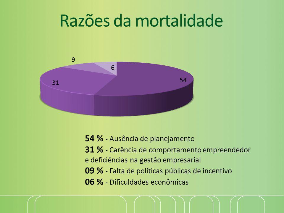 Razões da mortalidade 54 % - Ausência de planejamento 31 % - Carência de comportamento empreendedor e deficiências na gestão empresarial 09 % - Falta