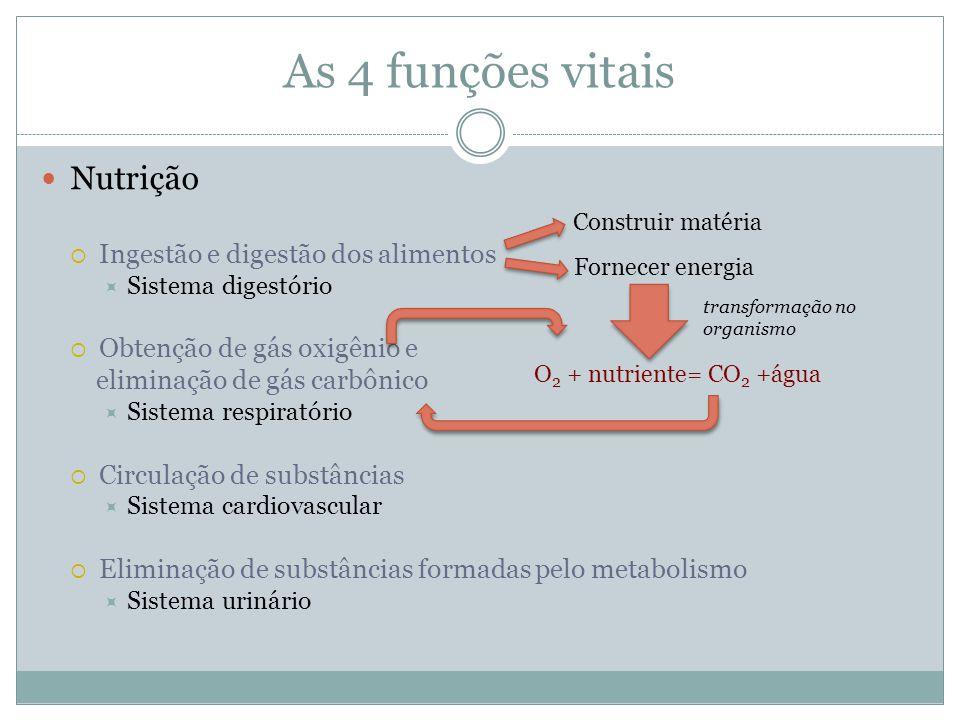 As 4 funções vitais Nutrição  Ingestão e digestão dos alimentos  Sistema digestório  Obtenção de gás oxigênio e eliminação de gás carbônico  Siste