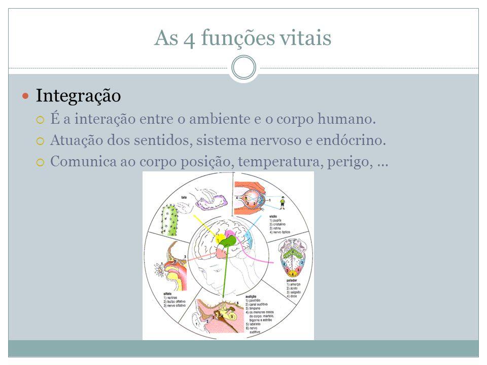 As 4 funções vitais Integração  É a interação entre o ambiente e o corpo humano.  Atuação dos sentidos, sistema nervoso e endócrino.  Comunica ao c