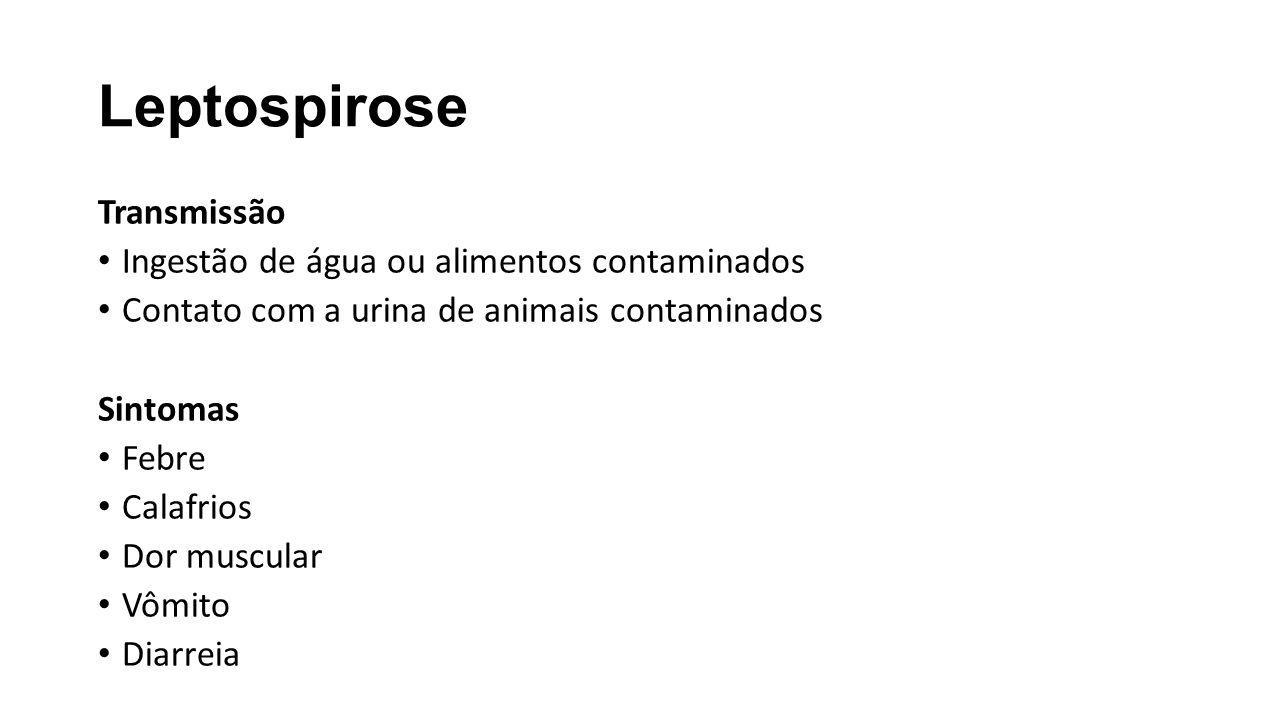 Leptospirose Transmissão Ingestão de água ou alimentos contaminados Contato com a urina de animais contaminados Sintomas Febre Calafrios Dor muscular