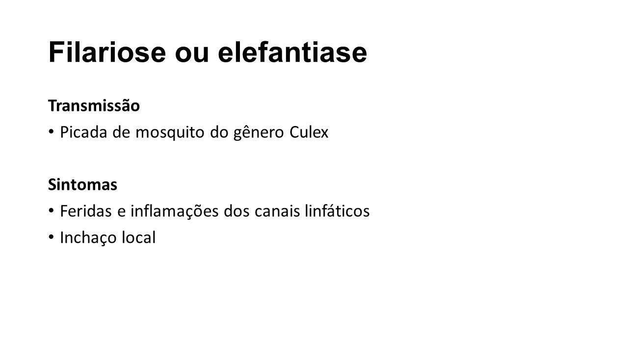 Filariose ou elefantiase Transmissão Picada de mosquito do gênero Culex Sintomas Feridas e inflamações dos canais linfáticos Inchaço local