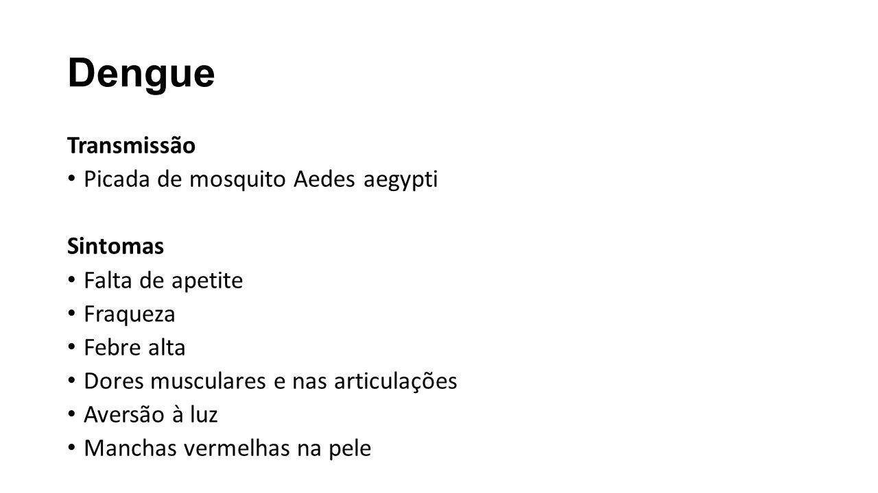 Dengue Transmissão Picada de mosquito Aedes aegypti Sintomas Falta de apetite Fraqueza Febre alta Dores musculares e nas articulações Aversão à luz Ma