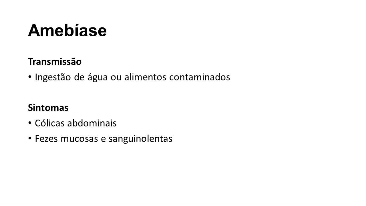 Dengue Transmissão Sintomas