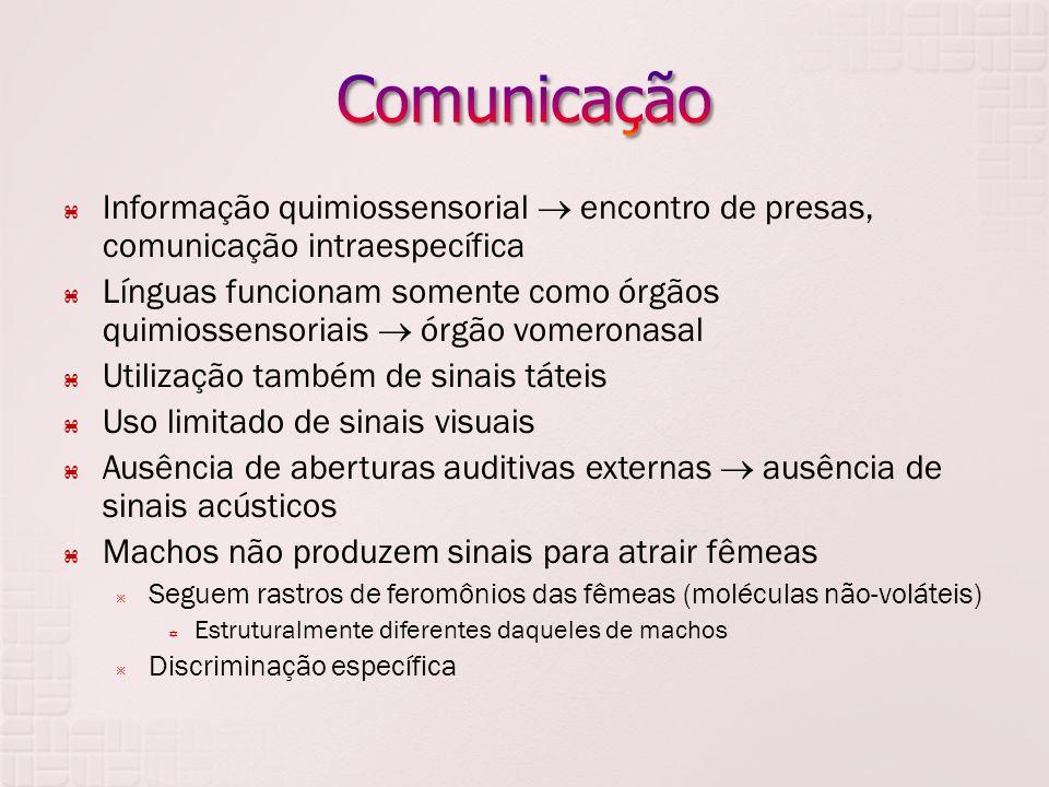  Informação quimiossensorial  encontro de presas, comunicação intraespecífica  Línguas funcionam somente como órgãos quimiossensoriais  órgão vome
