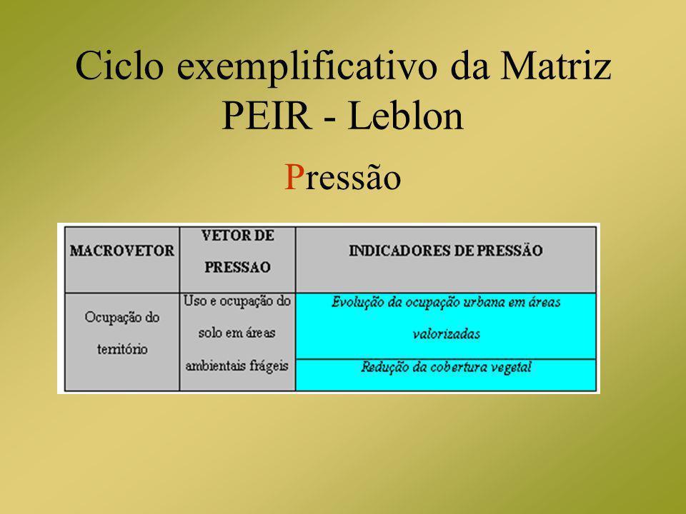 Ciclo exemplificativo da Matriz PEIR - Leblon Pressão