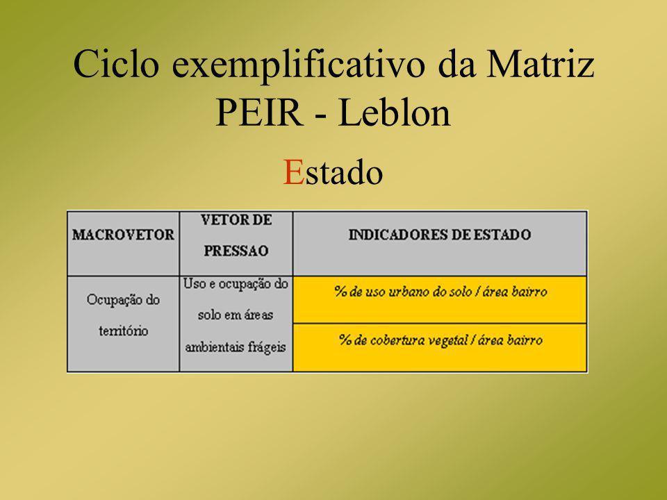 Ciclo exemplificativo da Matriz PEIR - Leblon Estado