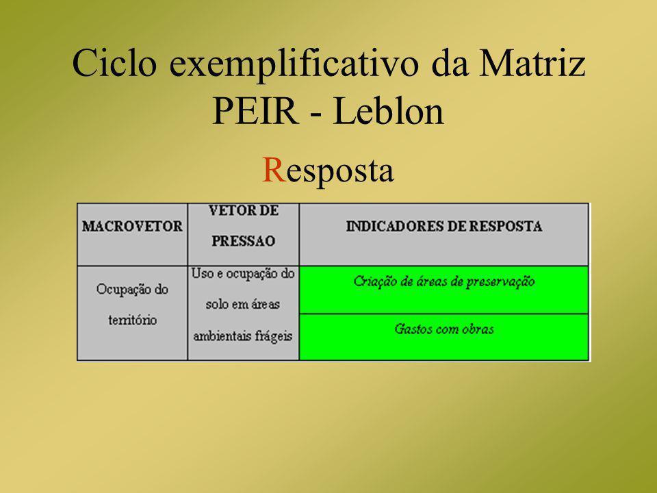 Ciclo exemplificativo da Matriz PEIR - Leblon Resposta