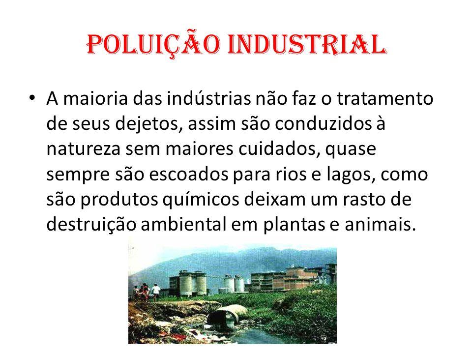 Poluição Industrial A maioria das indústrias não faz o tratamento de seus dejetos, assim são conduzidos à natureza sem maiores cuidados, quase sempre