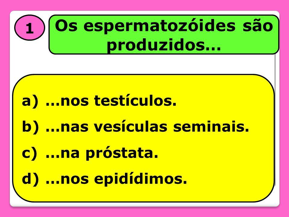 1 Os espermatozóides são produzidos… a)…nos testículos. b)…nas vesículas seminais. c)…na próstata. d)…nos epidídimos.