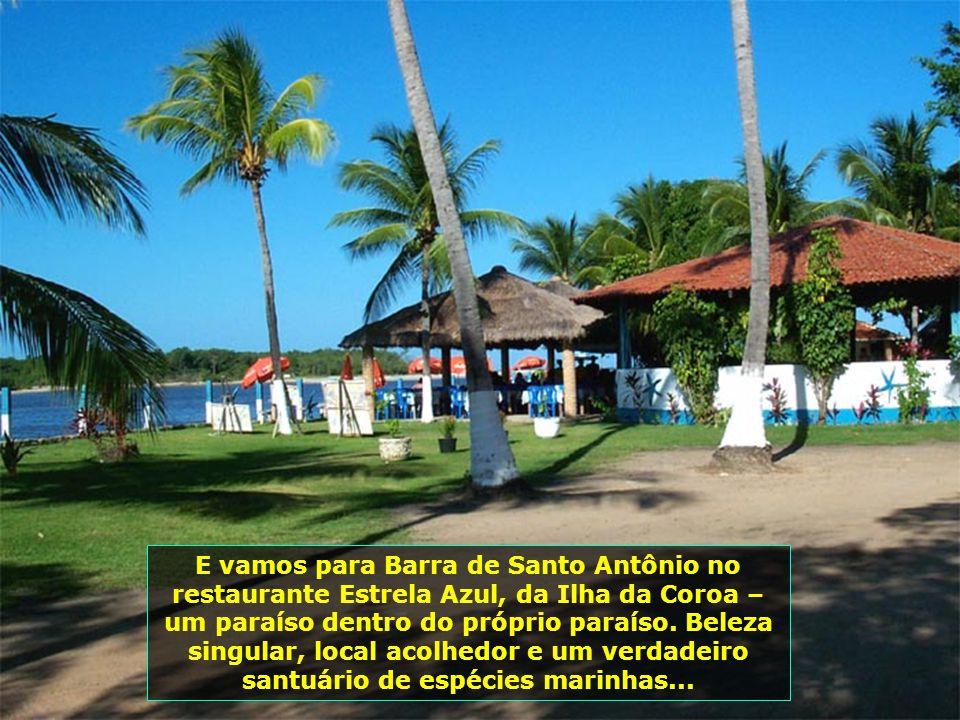 Outro lugar especial e de beleza incomparável é a Praia do Gunga, uma das mais belas de Alagoas. Aqui ela é vista do Mirante do Gunga. Destaca-se pela