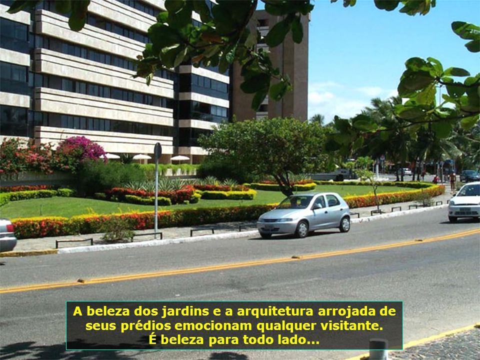 Alagoas tem sua economia baseada na cana-de- açúcar e no turismo.