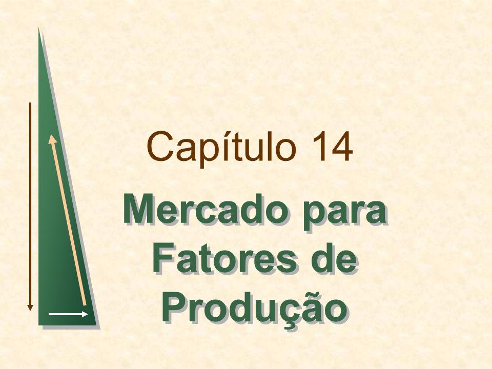 Capítulo 14 Mercado para Fatores de Produção