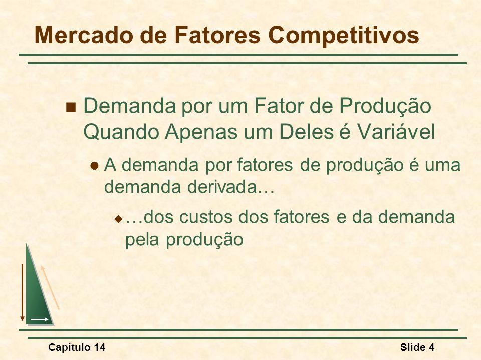 Capítulo 14Slide 4 Mercado de Fatores Competitivos Demanda por um Fator de Produção Quando Apenas um Deles é Variável A demanda por fatores de produção é uma demanda derivada…  …dos custos dos fatores e da demanda pela produção