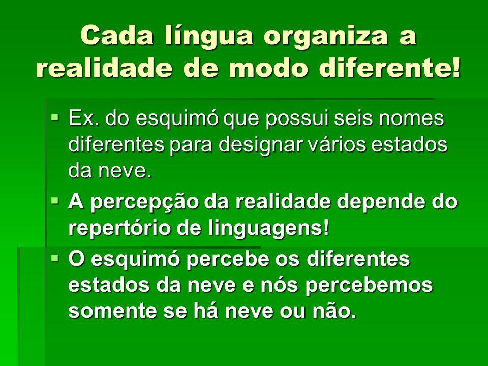Cada língua organiza a realidade de modo diferente!  Ex. do esquimó que possui seis nomes diferentes para designar vários estados da neve.  A percep