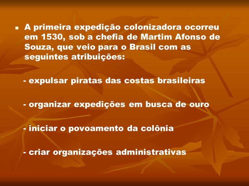 A primeira expedição colonizadora ocorreu em 1530, sob a chefia de Martim Afonso de Souza, que veio para o Brasil com as seguintes atribuições: - expu